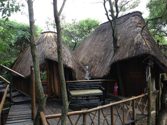 Pezulu Tree House Game Lodge:                   front of suite, showing bath to left and sleeping room to right.