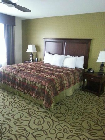Homewood Suites by Hilton Las Vegas Airport:                   1 King Bed Bedroom w/ Bathroom