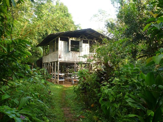 Bolita Hostel:                   Bolita Main Cabin