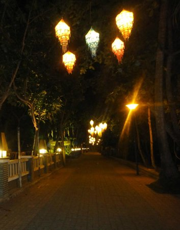Golden Beach Resort:                   the walk upto the hotel