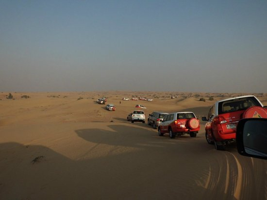 Arabian Adventures:                   Foto dos carros - super organizado