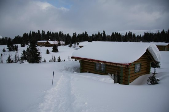Assiniboine Lodge:                   Our cabin and the lodge in the background from the path to the outhouse