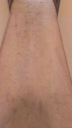 Aston at Poipu Kai:                   Unit 511 carpeting