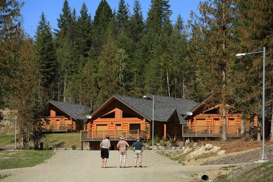 Alpine Meadows Resort: Your Accommodation