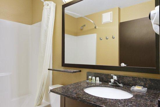 Microtel Inn & Suites by Wyndham Round Rock : Standard Bathroom