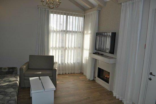 Merom Golan Resort Village:                   комната