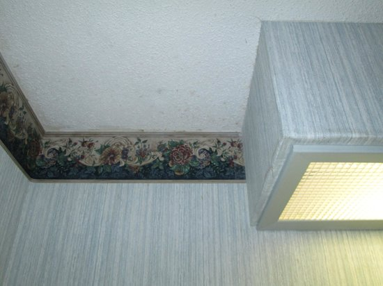 Motel 6:                                     Mould spots on ceiling over sink