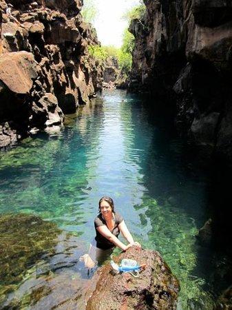 Puerto Ayora, Ecuador:                   Los colores eran mas inscreibles que en la foto