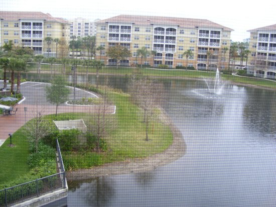 Sheraton Vistana Villages - International Drive:                   View from screened balcony