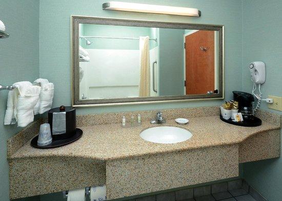 BEST WESTERN PLUS Wilmington/Wrightsville Beach: Guest Bathroom