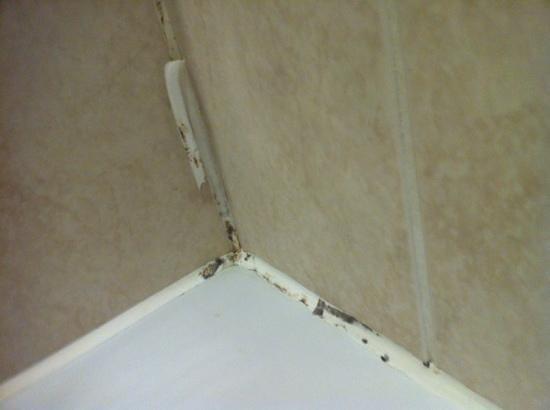 โรงแรมฮิลตัน แบรคเนลล์:                   Grouting around bath