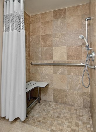 Hampton Inn Appleton-Fox River Mall Area: Accessible Roll In Shower