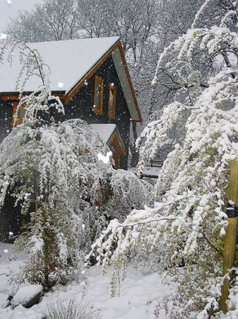 Wanaka Homestead Lodge and Cottages: Big Snow fall