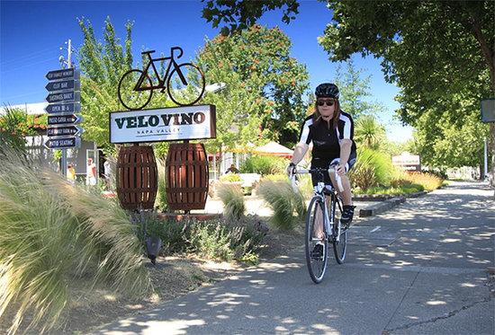 Napa Valley Cyclist