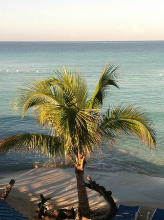 Negril Tree House Resort:                   View from the Breakfast Buffet