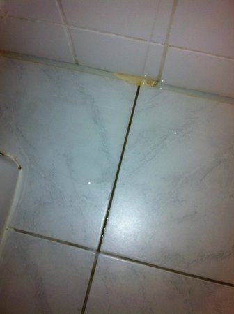 West Side Inn Hotel:                   Mouldy tiles