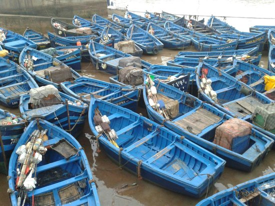 Dar Assalama: Port