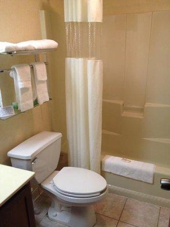 Rodeway Inn & Suites:                   clean restroom...
