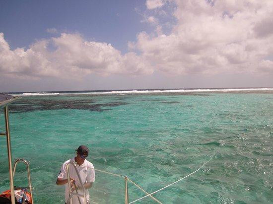 جراند كاريبي بيليز:                   The reef from catamaran                 