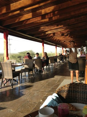 Ole Sereni:                   A slightly different view of porch breakfast area