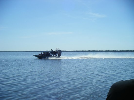 Airboats & Alligators: passing another air boat from the same tour place