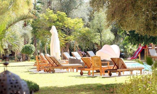 Es Saadi Marrakech Resort - Hotel: autour des piscines