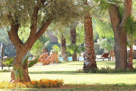 Es Saadi Marrakech Resort - Hotel: beaucoup d'espace partout