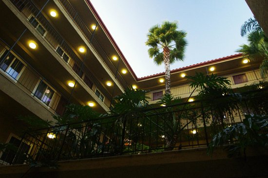 Quality Inn San Diego Downtown North:                                     Early Evening In The Courtyard.