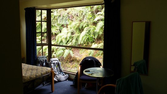 Ivory Towers Backpackers Lodge : Bush, not overlooked