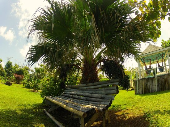 Hotel Jamaican Colors: Bamboo bench or Hammocks relaxation style...