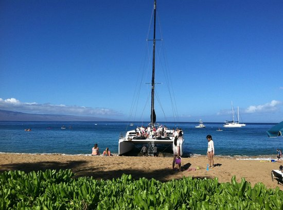 The Westin Maui Resort & Spa:                                                       A boat tour is leaving on the beach