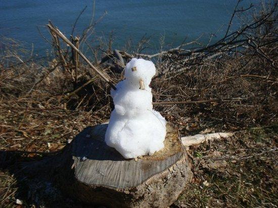 Cliffside Inn: Snowman