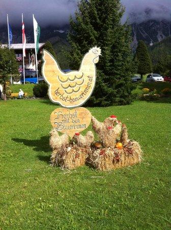 Hotel Rosslhof: Welcome to Ramsau - Harvest Time