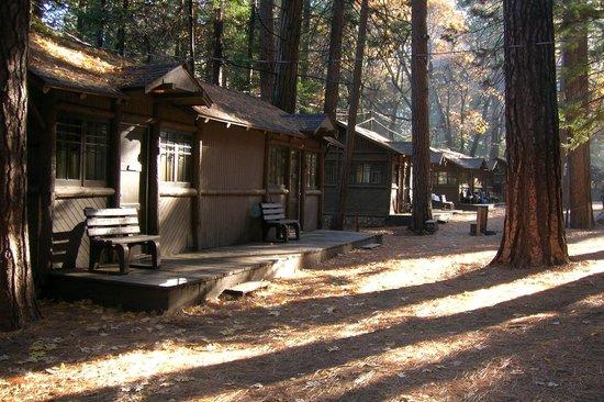 Breakfast Picture Of Curry Village Pavillion Yosemite