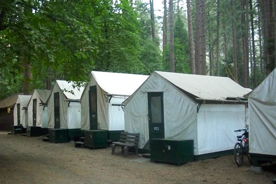 Half Dome Village Curry Village tent cabins & Curry Village tent cabins - Picture of Half Dome Village Yosemite ...