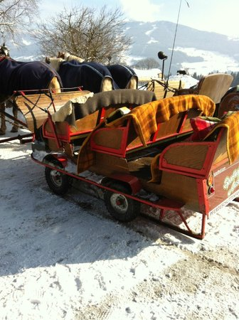 Hotel Rösslhof: The sleigh ride