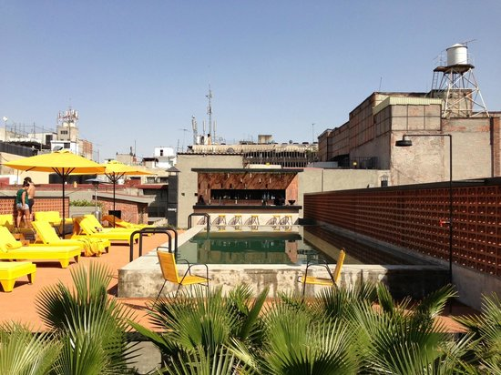 Hotel Downtown Mexico:                   Fabulous pool and bar