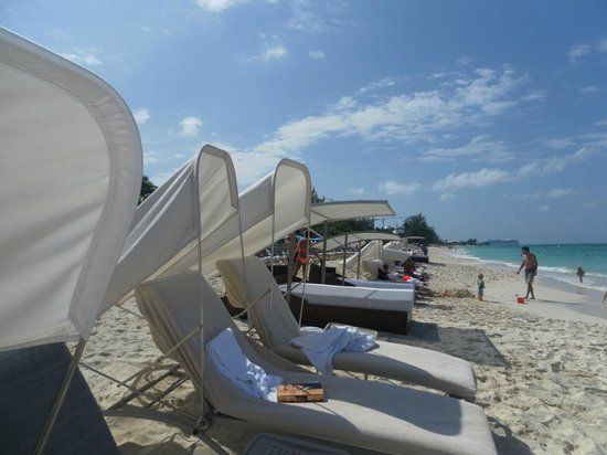 The Ritz-Carlton, Grand Cayman:                   cushioned beach chairs