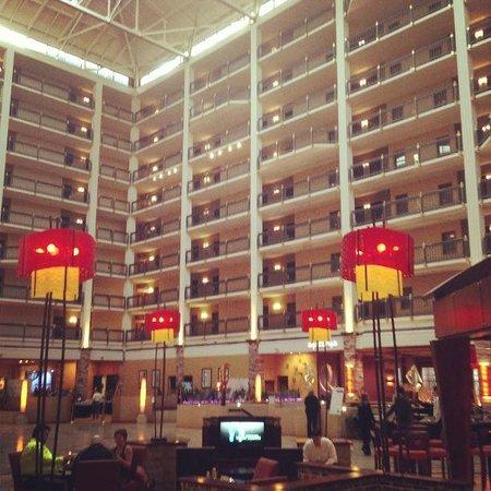 르네상스 오스틴 호텔 사진