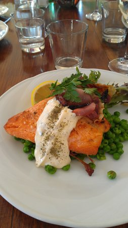 Mole Creek Guesthouse: Delicious ocean trout for dinner