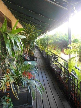 Park Plaza Hotel Winter Park :                   Balcony off the room