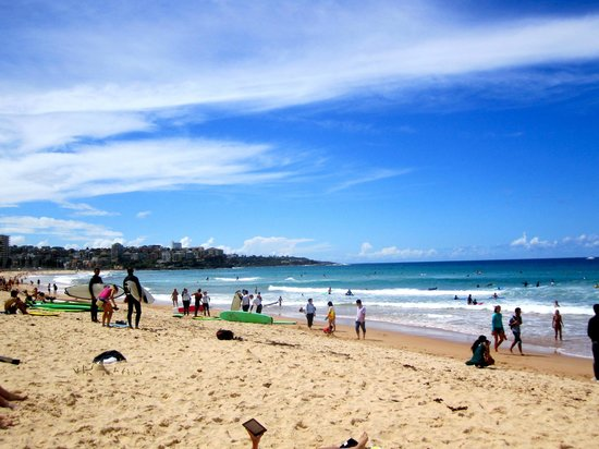 Manly Beach :                   Man Town Haven
