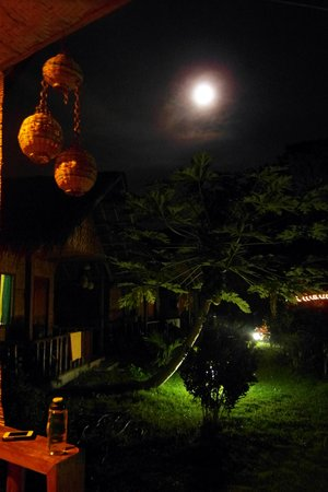 Reggae Guesthouse:                   perfect full moon ambiance