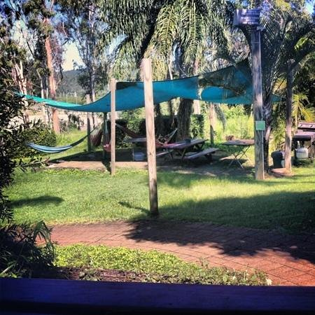 Backpackers by the Bay:                   hammocks area