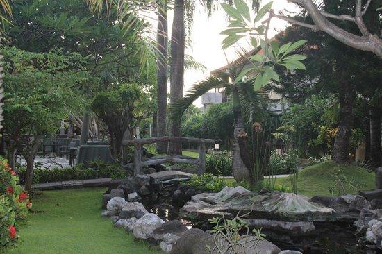 Adi Dharma Hotel:                   Grounds.