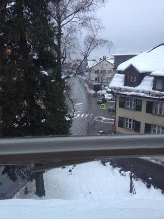 Brauereigasthof Reiner :                   uitzicht vanuit een kamer