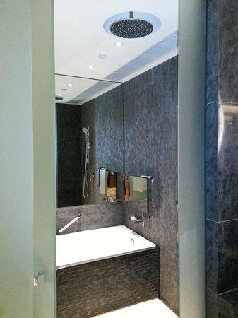 Hotel ICON: Rain Showerhead