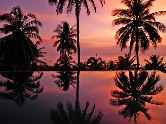 The Rocks Villas: Sunset at the pool