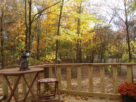 Timber Ridge Outpost & Cabins: Maple Oak tree house lower deck