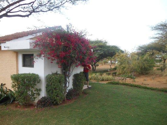 Pushkar Resorts: les bungalows
